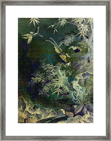 Birds Of The Jungle Framed Print