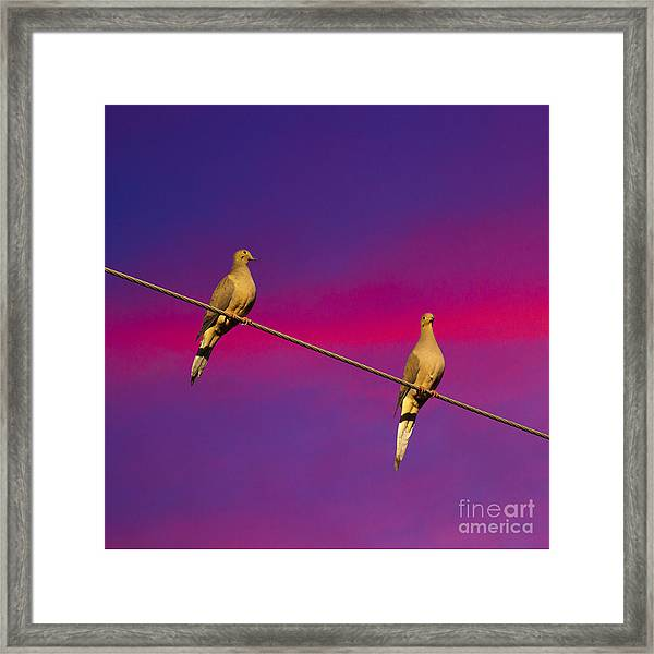 Birds On A Wire Framed Print