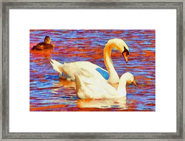 Birds On The Lake Framed Print