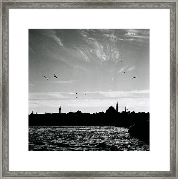 Birds Over The Golden Horn Framed Print