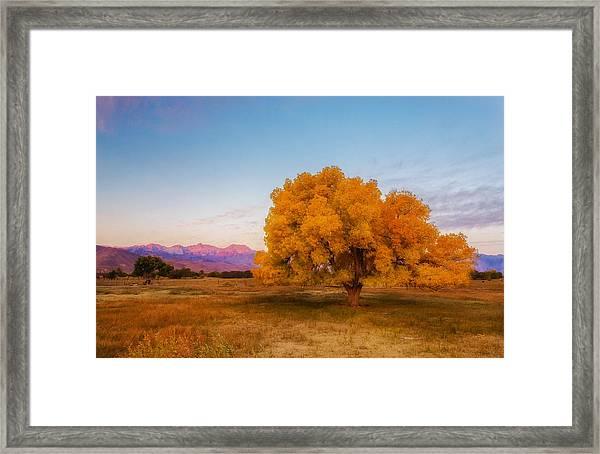 Bishop Sunrise Framed Print