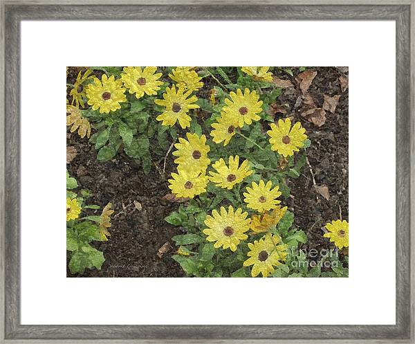 Bits Of Sunshine Framed Print