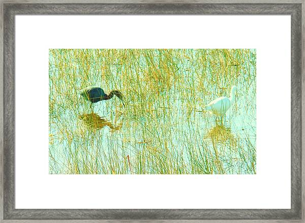 Black And White Working Together Framed Print by Van Ness