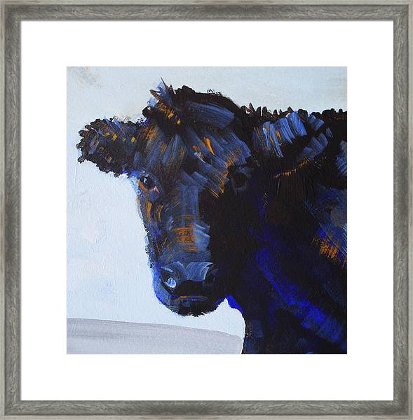 Black Cow Head Framed Print