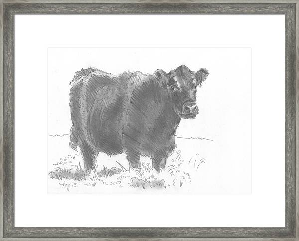 Black Cow Pencil Sketch Framed Print