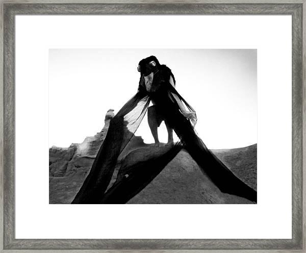 Black Crow 2 Framed Print