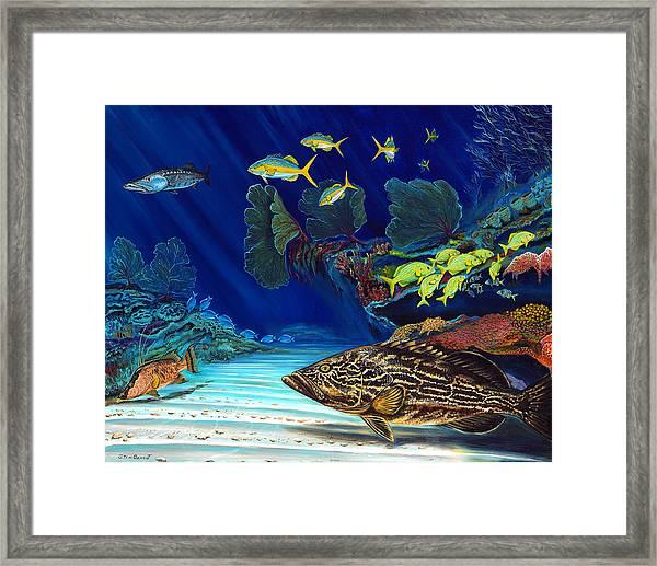 Black Grouper Reef Framed Print