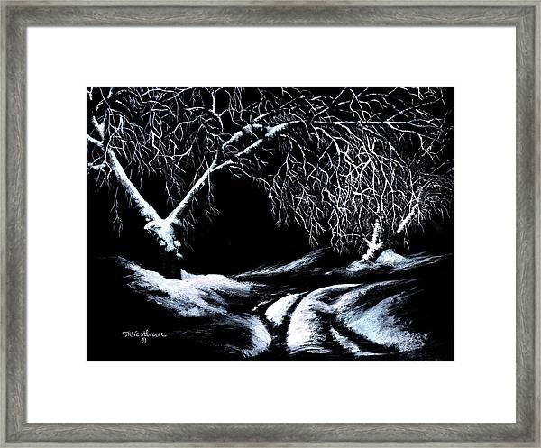 Winter Lace Framed Print