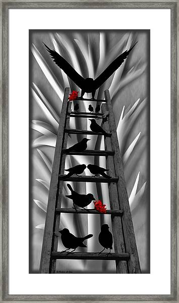 Blackbird Ladder Framed Print