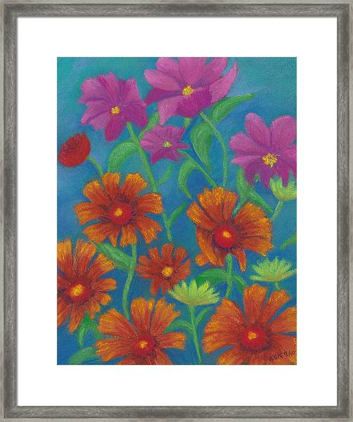Blanket Flowers And Cosmos Framed Print