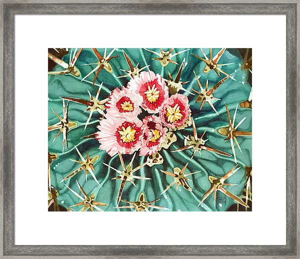 Bloomin' Horse Crippler Cactus Framed Print