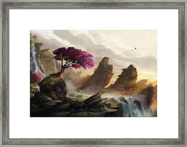 Blossom Sunset Framed Print