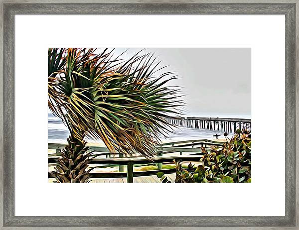 Blowin At The Beach Framed Print