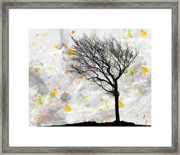 Blowing It The Wind Framed Print