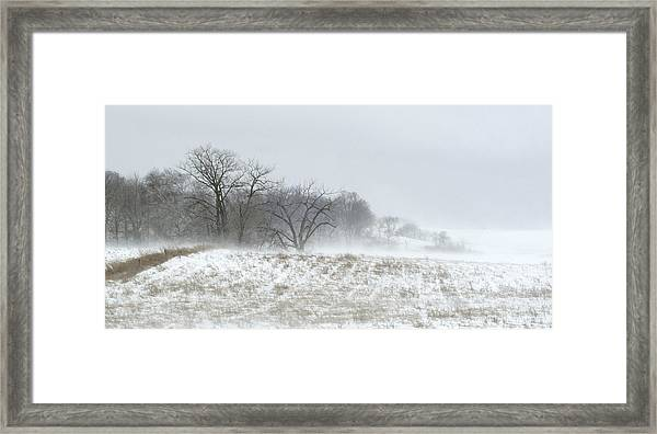Blowing Snow Over Fields And Forest Framed Print