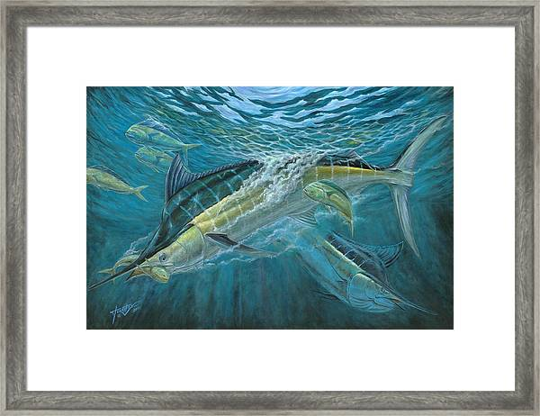 Blue And Mahi Mahi Underwater Framed Print