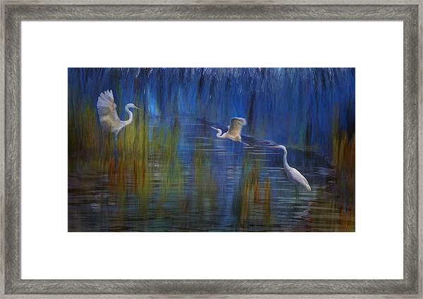 Framed Print featuring the photograph Blue Bayou II by Melinda Hughes-Berland