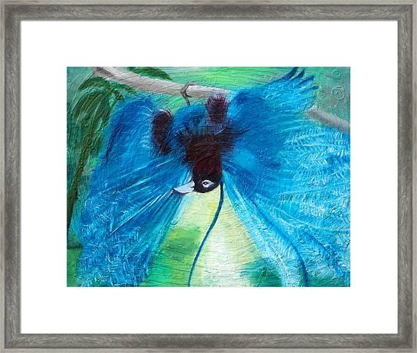 Blue Bird Of Paradise Framed Print