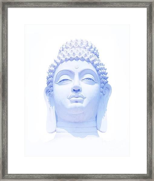 Blue Buddha Framed Print by Tim Gainey