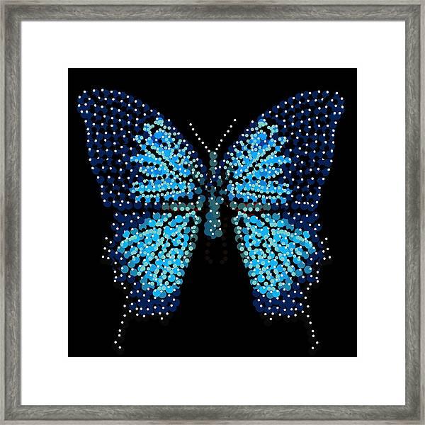 Blue Butterfly Black Background Framed Print