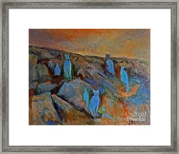Blue Cats Framed Print