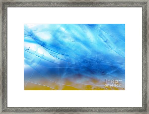 Blue Cloud Framed Print by JCYoung MacroXscape