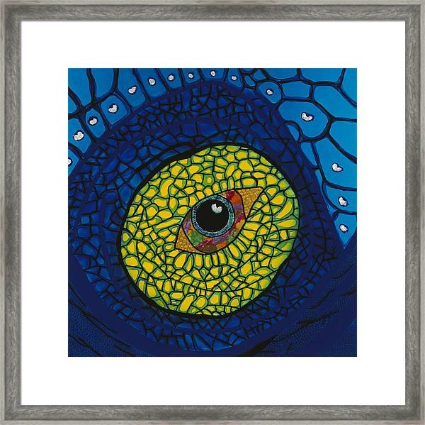 Blue Eye Framed Print by Patrick OLeary