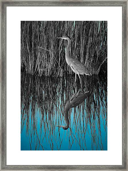 Framed Print featuring the photograph Blue by Francis Trudeau