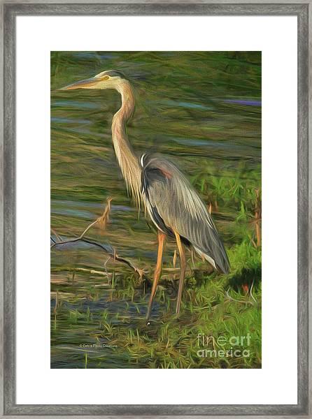 Blue Heron On The Bank Framed Print