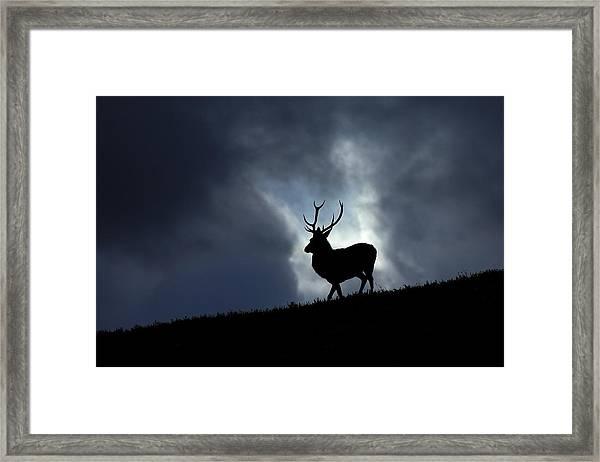 Blue Horizon Framed Print