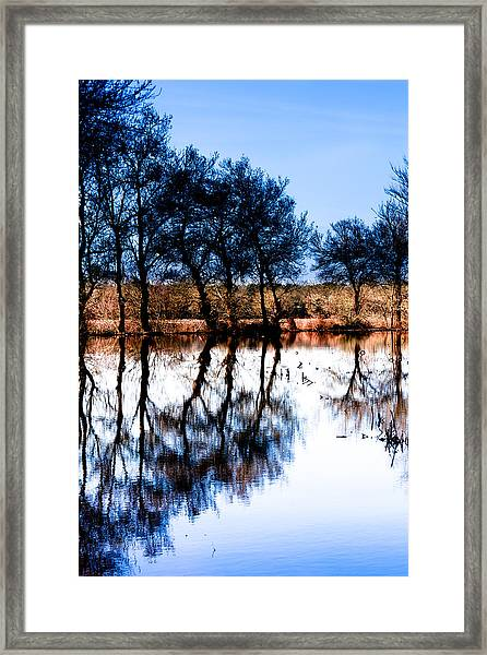 Blue Mirror Framed Print