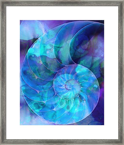 Blue Nautilus Shell By Sharon Cummings Framed Print