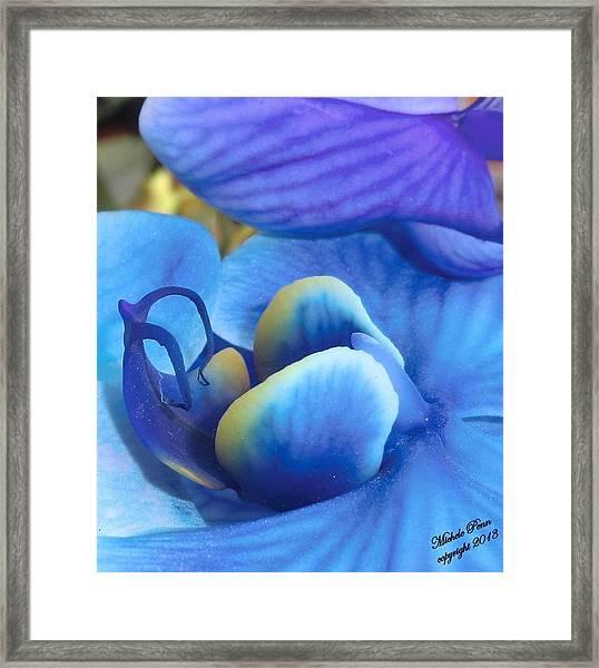 Blue Oasis 2  Framed Print