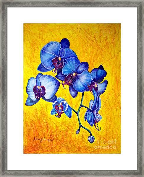 Blue Orchids 1 Framed Print