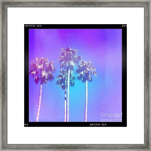 Blue Palms Framed Print