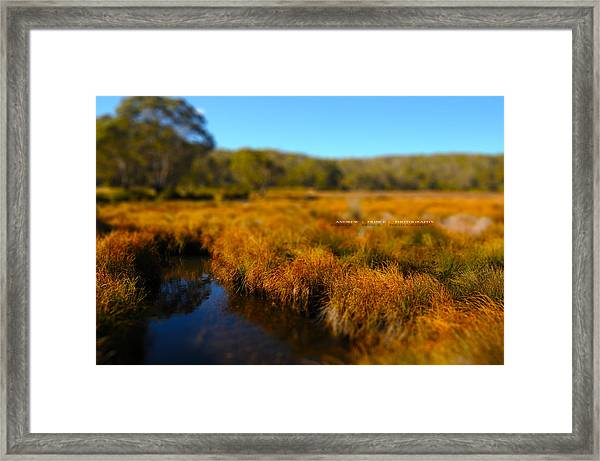 Blue Poles Framed Print by Andrew Prince