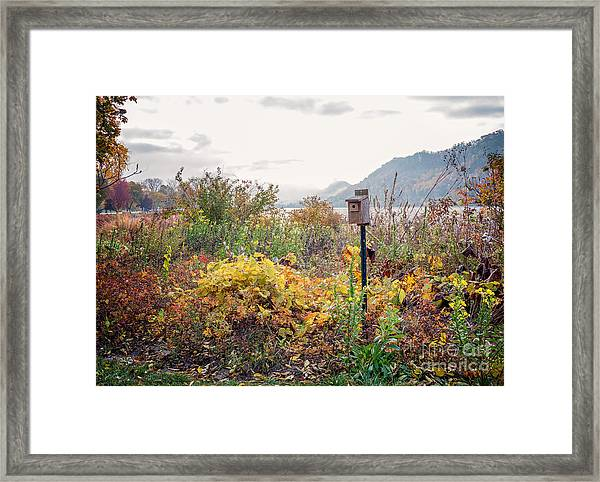 Framed Print featuring the photograph Bluebird House At East Lake Winona by Kari Yearous