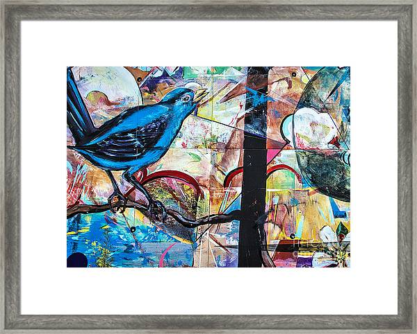 Bluebird Sings With Happiness Framed Print