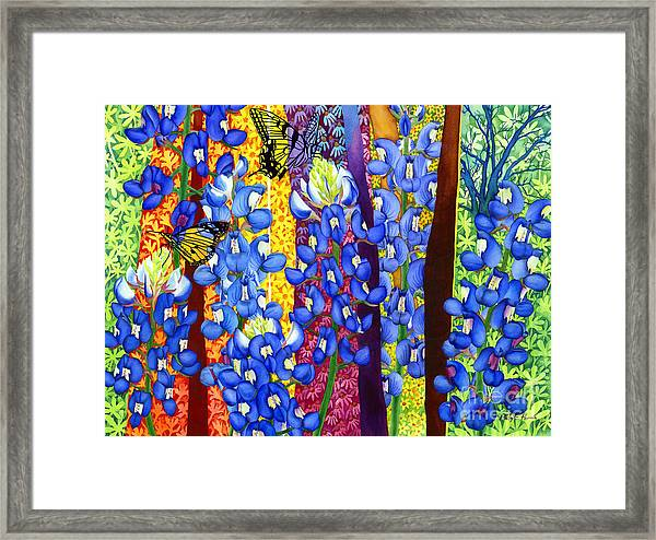 Bluebonnet Garden Framed Print