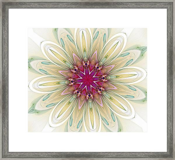 Blushing Colors Framed Print