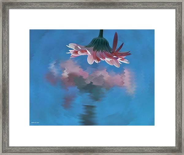 Blushing Pink Bloom Framed Print