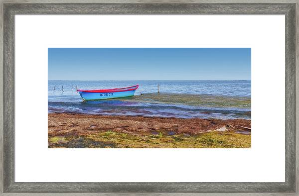 Boat At The Pond Framed Print