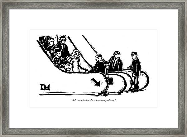 Bob Was Raised In The Wilderness By Salmon Framed Print