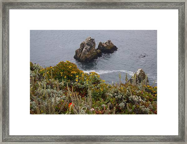 Bodega Flowers Framed Print