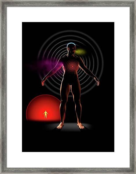 Body Signals Framed Print