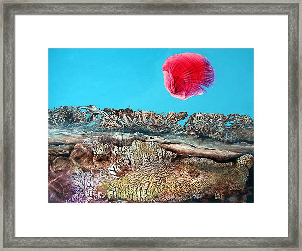 Bogomil Sunrise 2 Framed Print