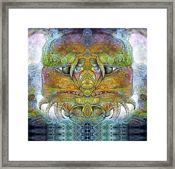 Bogomil Variation 11 Framed Print