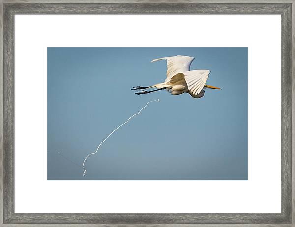 Bombs Away Framed Print