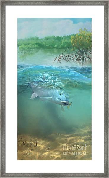 Bone Fish Framed Print