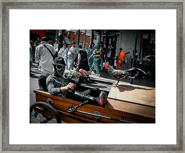 Bone Man And Rooster In Coffin Car On Mardi Gras In New Orleans Framed Print